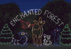 enchanted_forest.sized