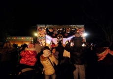 20_Elf-Show-Crowd