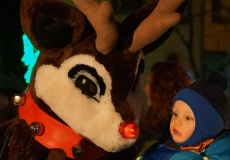 AFF-Rudolph